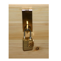 Brass tone hasp & staple/combination padlock