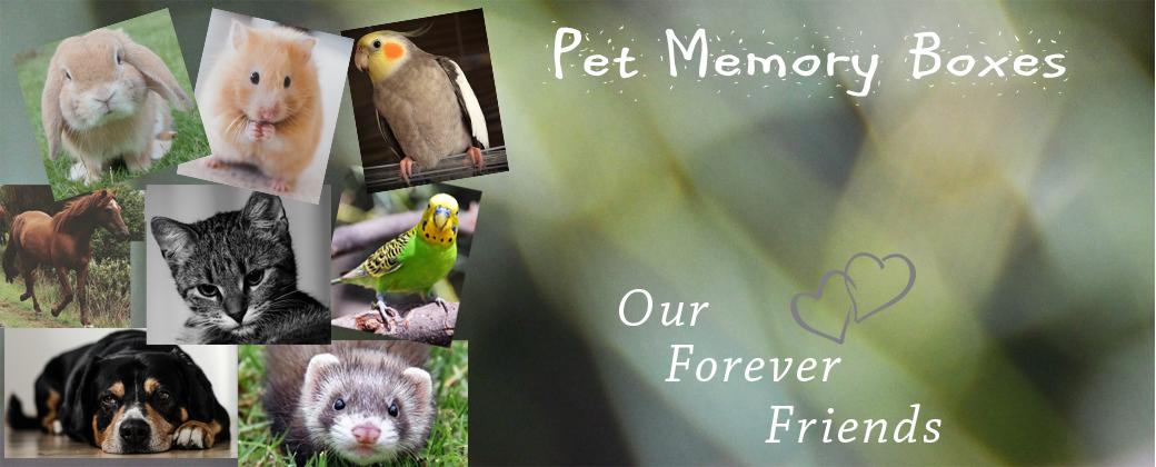 Pet Memory Memorial Boxes